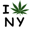 Demystifying medical cannabis in New York State